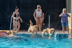Hundebadetag2021-129