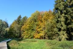 Herbst12