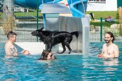 Hundebadetag2021-103