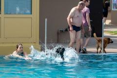 Hundebadetag2021-128